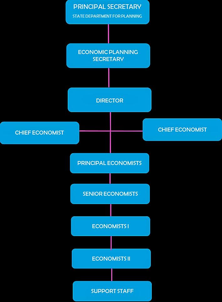 Directorate Organogram